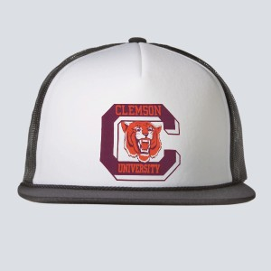 ebbfe1cf27f ... reduced 1962 clemson university hats c346d 23e64